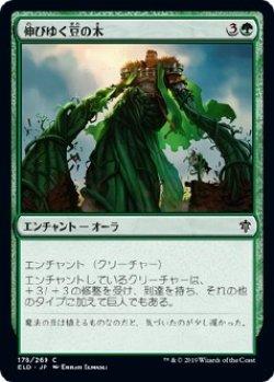 画像1: 【Foil】【日本語版】伸びゆく豆の木/Tall as a Beanstalk