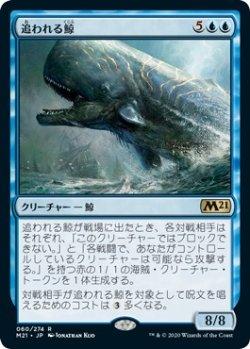 画像1: 【日本語版】追われる鯨/Pursued Whale