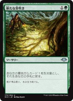 画像1: 【日本語版】新たな芽吹き/Regrowth