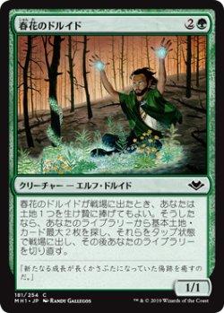 画像1: 【日本語版】春花のドルイド/Springbloom Druid