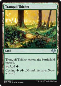 画像1: 『英語版』平穏な茂み/Tranquil Thicket