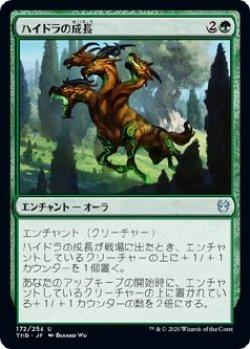 画像1: 【Foil】【日本語版】ハイドラの成長/Hydra's Growth