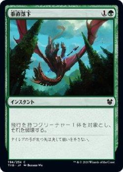 画像1: 【Foil】【日本語版】垂直落下/Plummet